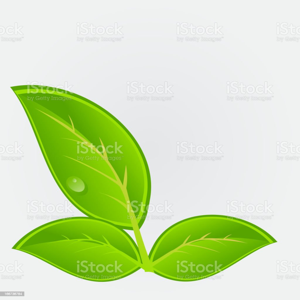 Environmental icon with plant. Vector illustration royalty-free stock vector art