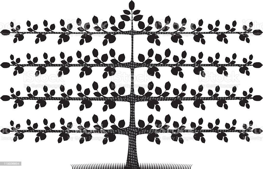 Espalier Tree vector art illustration