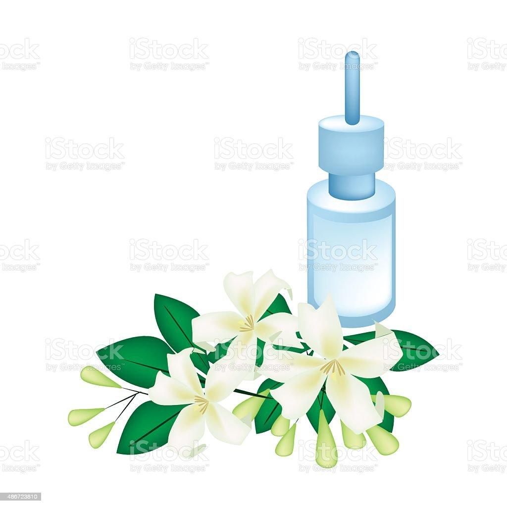Essential Oil with Orange Jessamine or Mock Orange Flowers vector art illustration