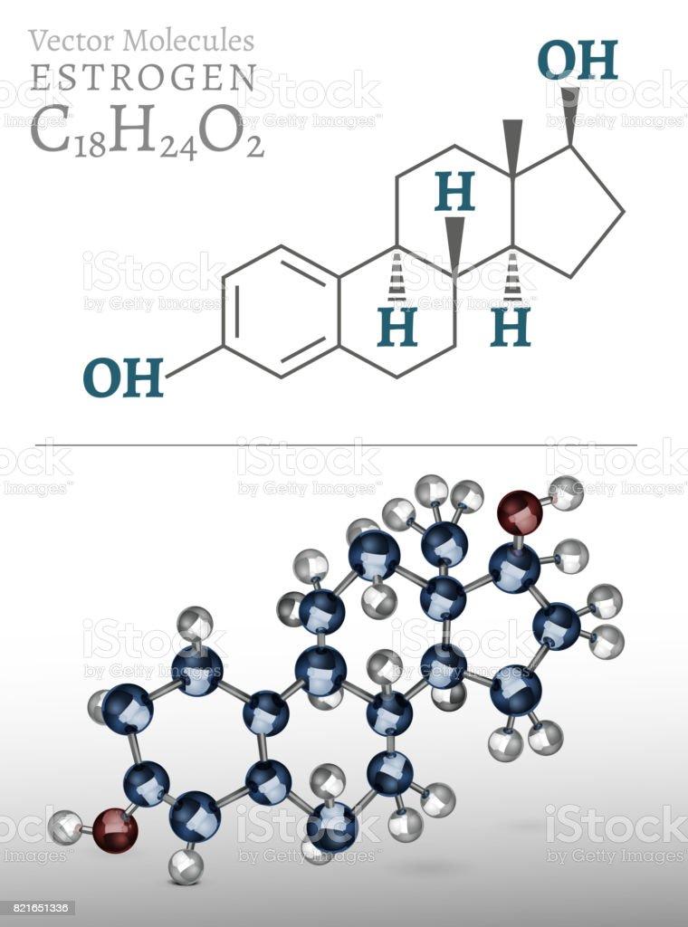 Estrogen Molecule Image vector art illustration