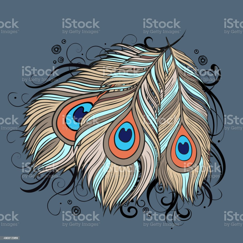 ethnic peacock Feathers royalty-free stock vector art