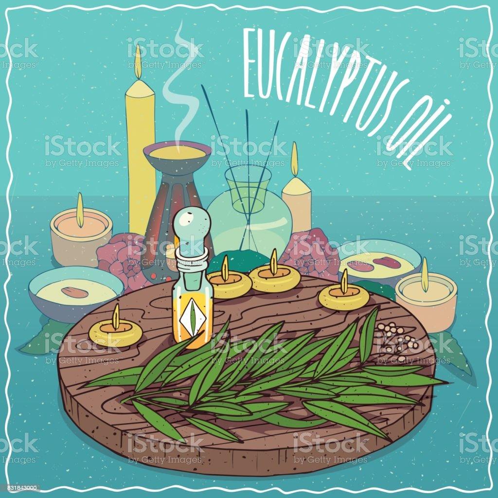 Eucalyptus oil used for aromatherapy vector art illustration