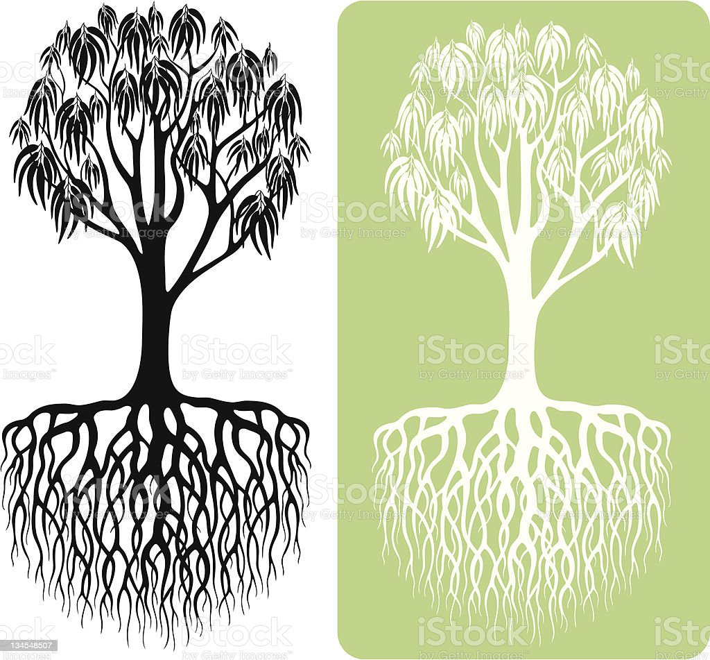 Eucalyptus Tree Silhouette royalty-free stock vector art