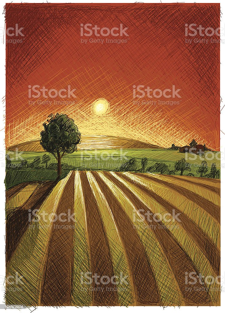 Evening Field royalty-free stock vector art