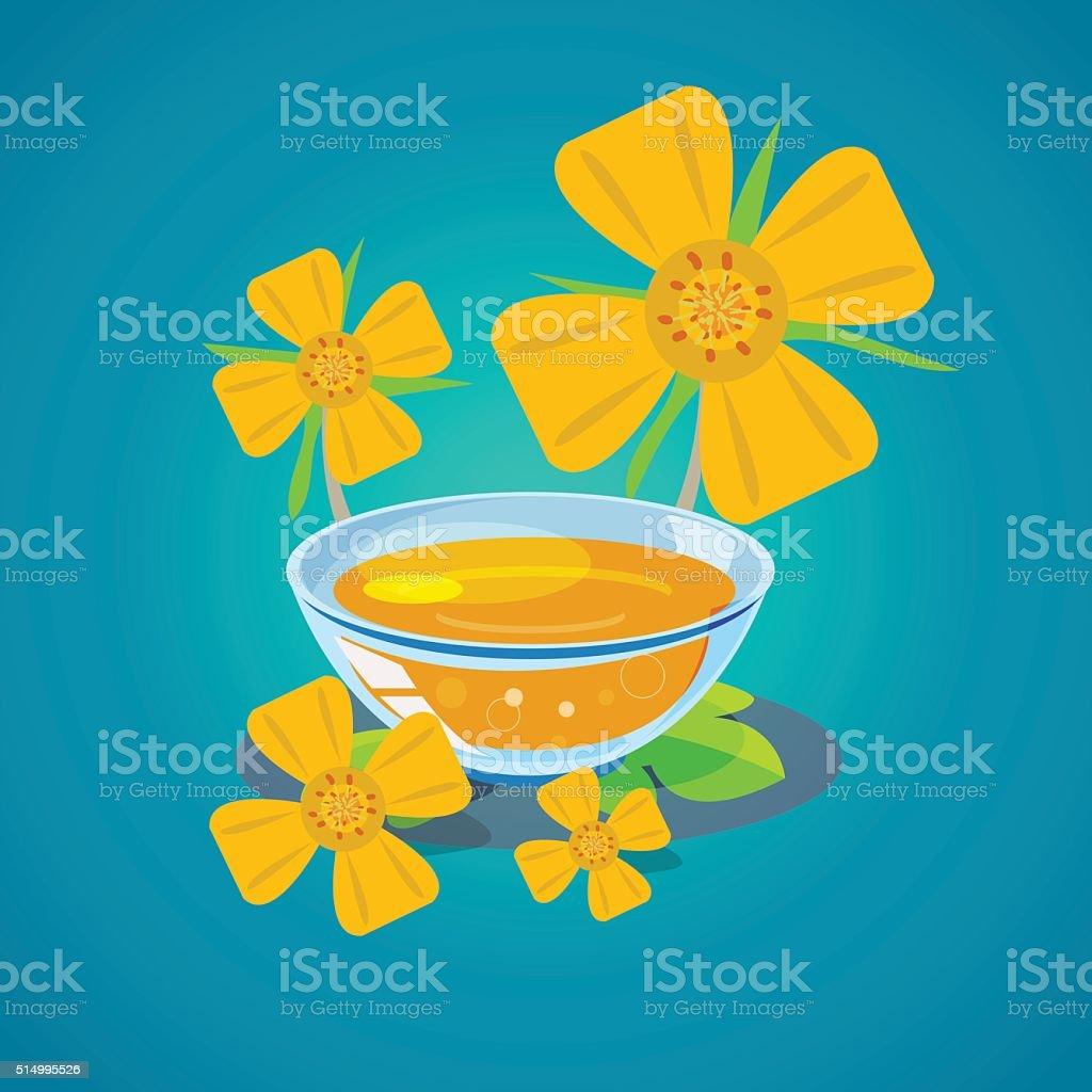 evening primrose oil - vector vector art illustration