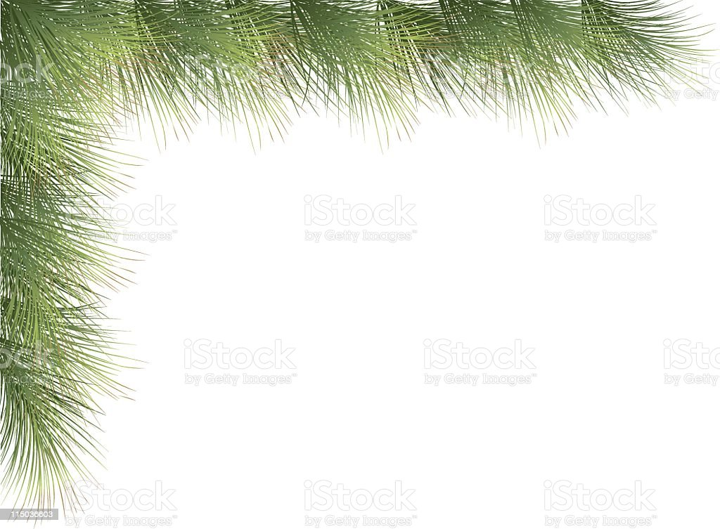 Evergreen Corner vector art illustration