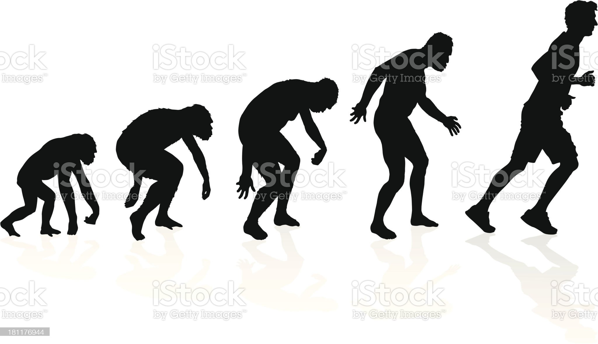 Evolution of the Runner royalty-free stock vector art