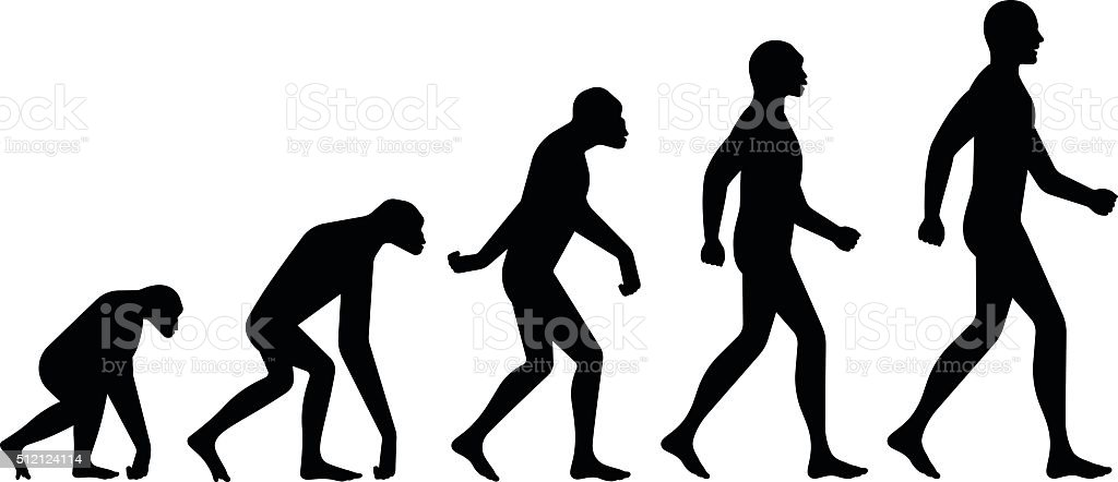Evolution Silhouettes vector art illustration