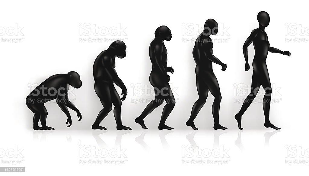 Evolution royalty-free stock vector art