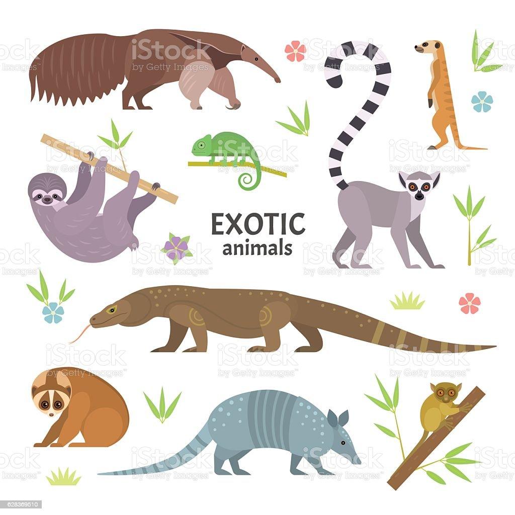 Exotic animals. vector art illustration