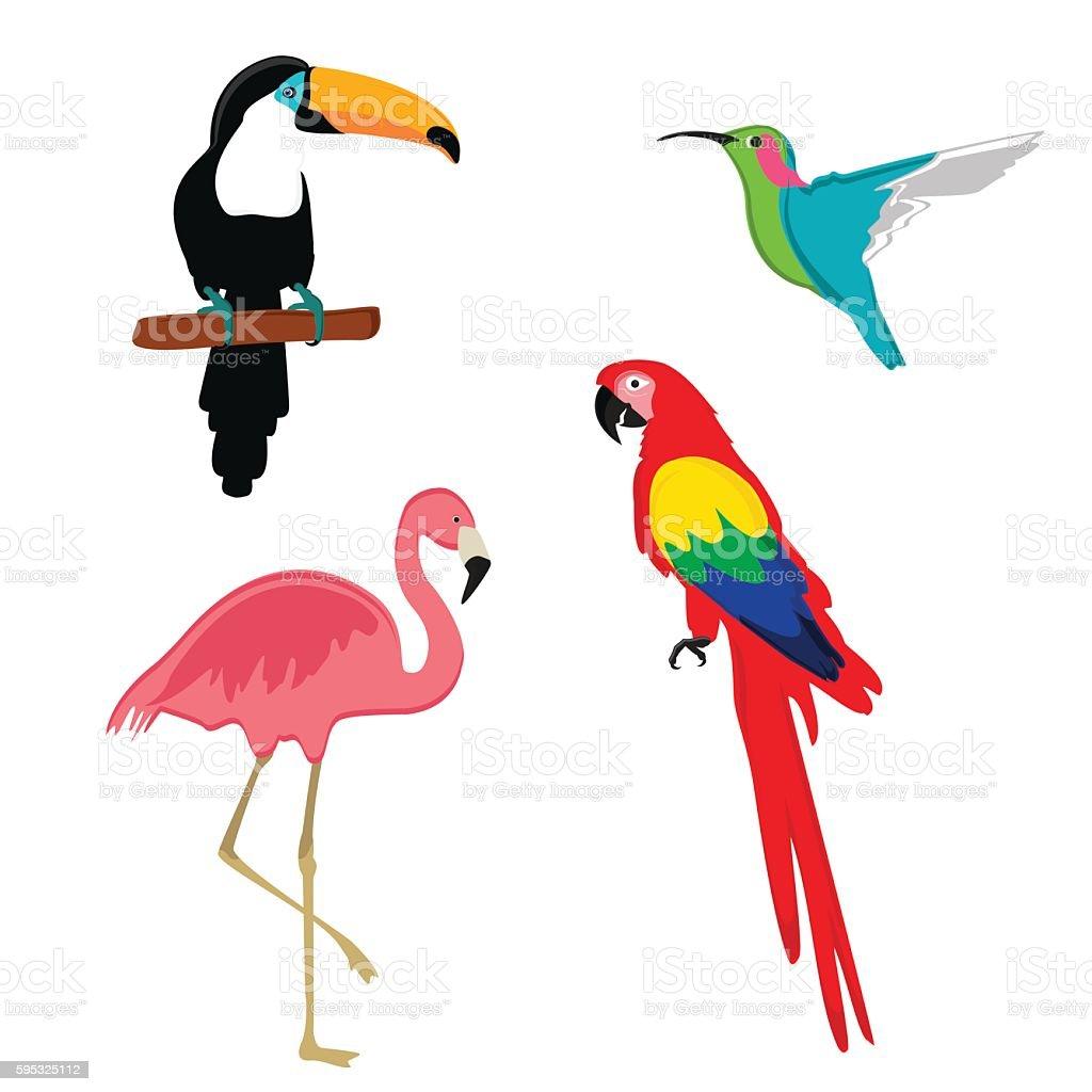 Exotic birds vector vector art illustration