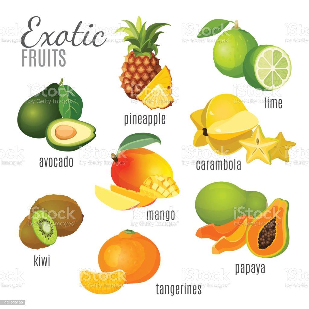 Exotic fruits avocado, pineapple, papaya, tangerine, mango, kiwi, carambola, lime vector art illustration