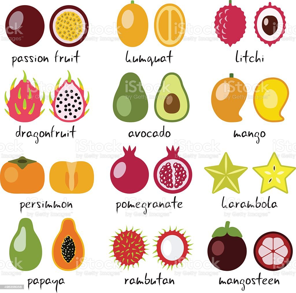 exotic fruits collection vector art illustration