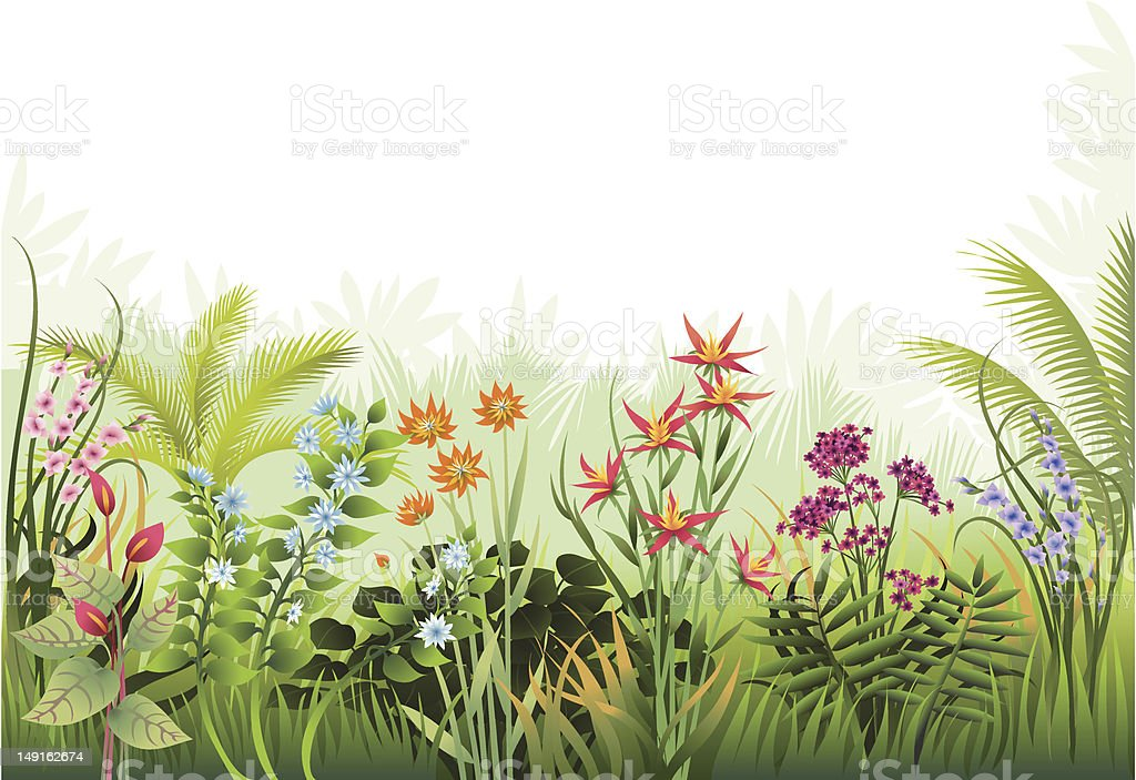 Exotic Garden Border vector art illustration