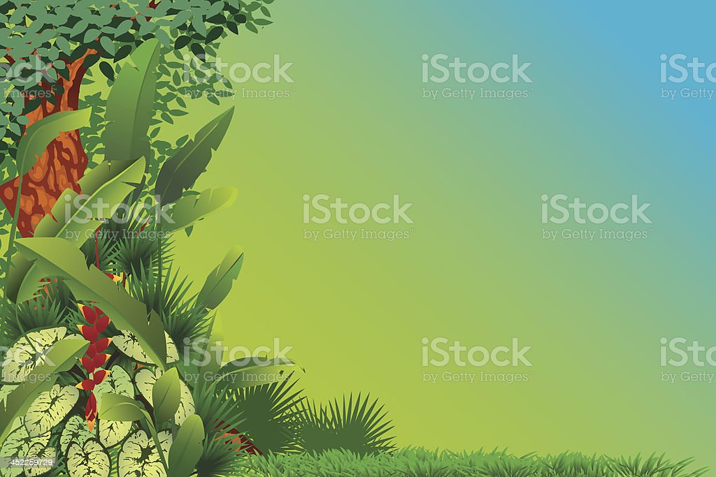 Exotic tropical forest royalty-free stock vector art