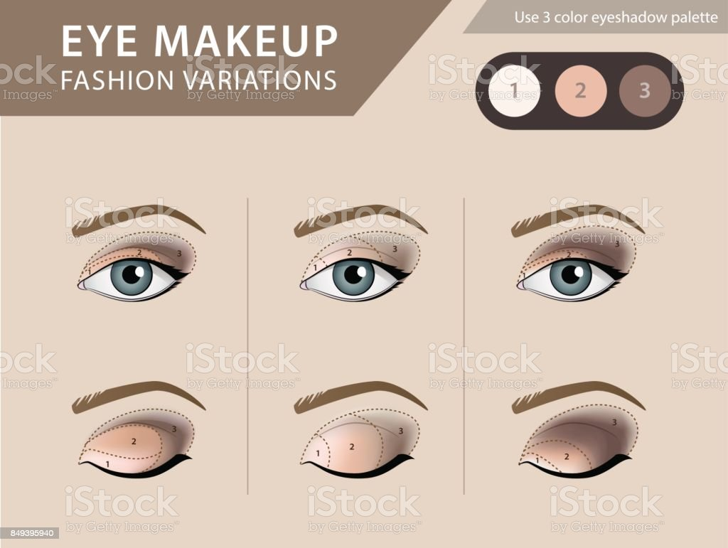 Eye makeup tutorial, eyeshadow vector template vector art illustration