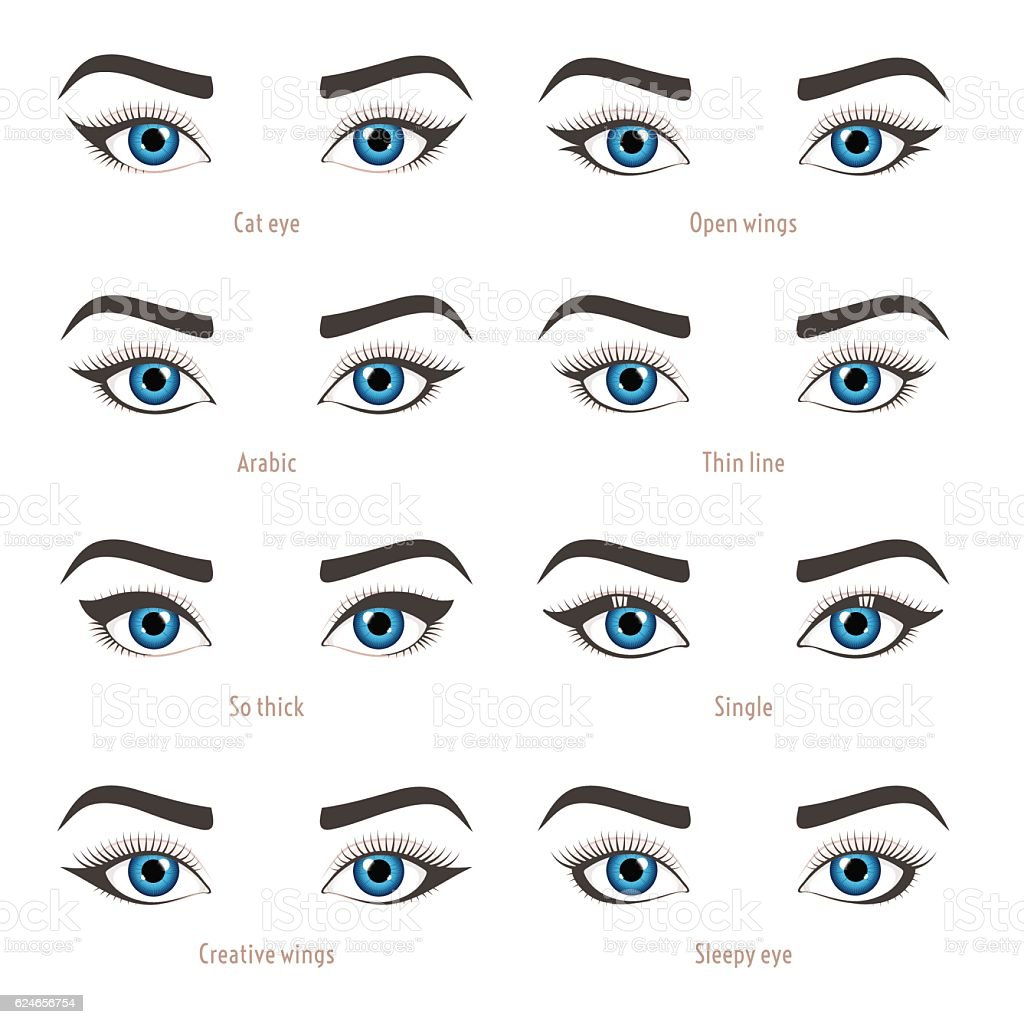 Eye makeup types. Eyeliner shape tutorial. Vector set with captions. vector art illustration