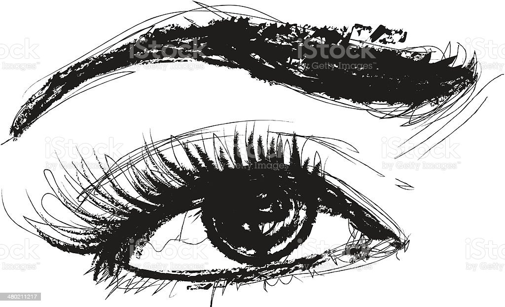 Eye Vector Pencil Drawing vector art illustration
