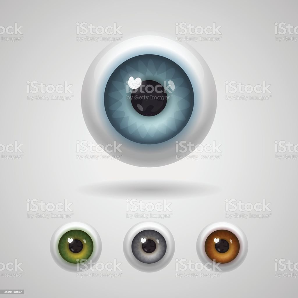 Eyeballs with big irises vector art illustration