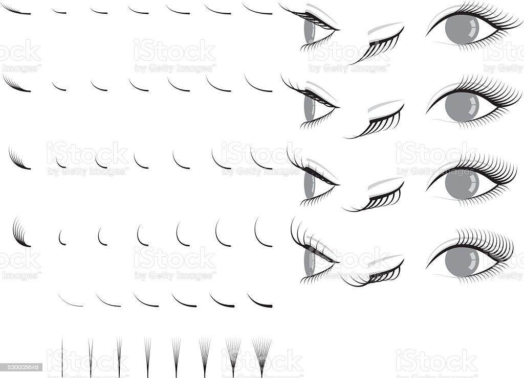 Eyelash extension. false eyelashes. vector art illustration