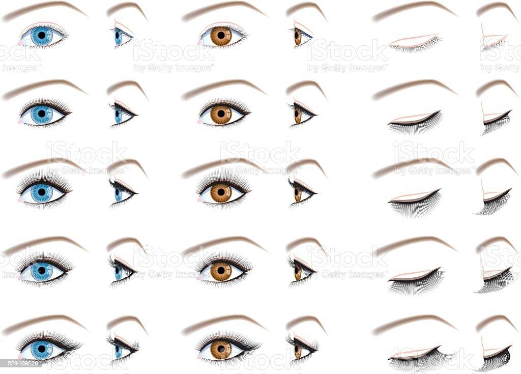 eyelash extensions, false eyelashes type vector art illustration