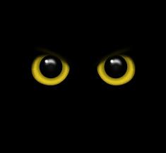 Resultado de imagen de negro ojos de buho