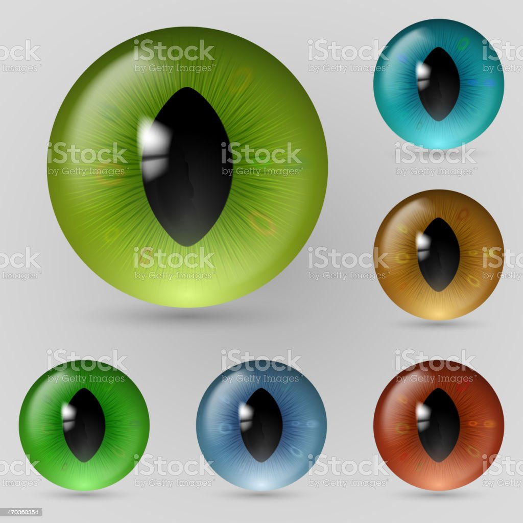 Eyes reptiles vector art illustration