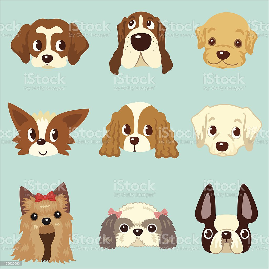 faces of dogs vector art illustration