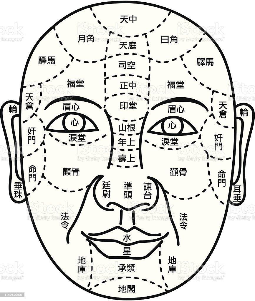 Facial Fortune Telling Diagram royalty-free stock vector art