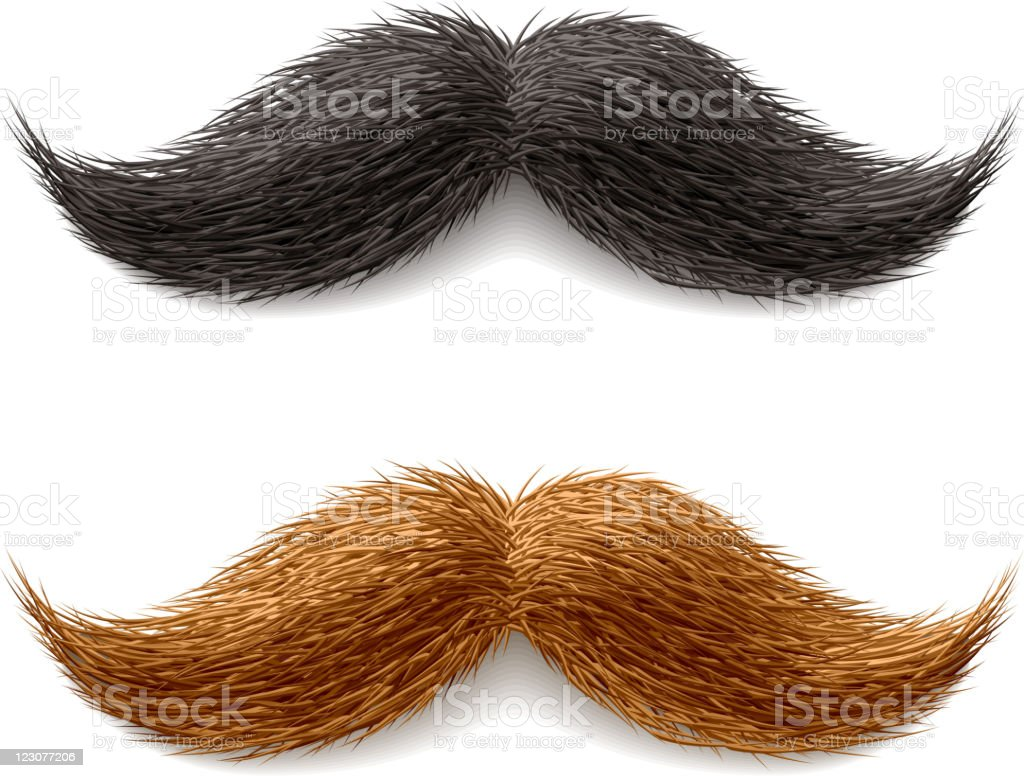 Fake mustaches vector art illustration
