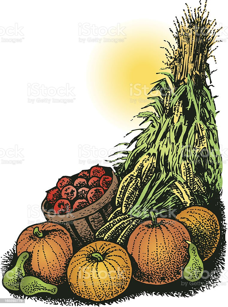 Fall Autumn Harvest with Pumpkins, Apples & Corn royalty-free stock vector art