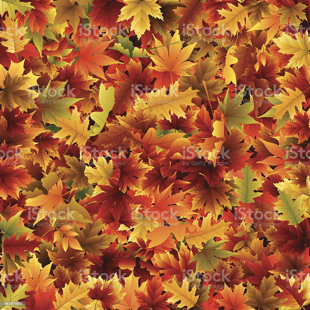Fall Leaves Background royalty-free stock vector art