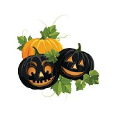 Fall Pumpkins On White Background