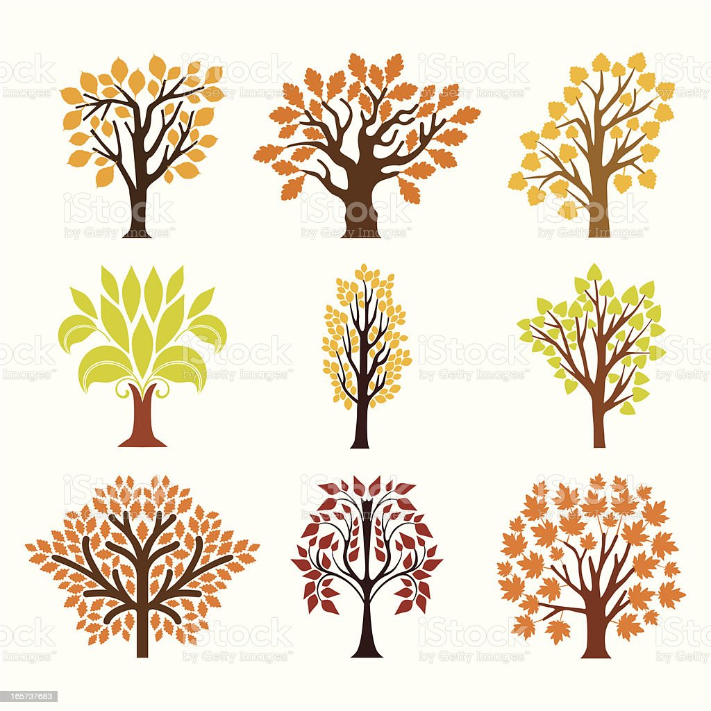 Fall trees vector art illustration
