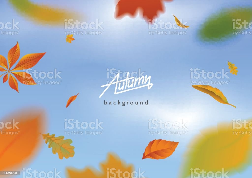 Falling autumn leaves on blue sky background. Motion blur effect. Flying autumnal foliage around the text. Applicable for banner, poster,flyer, advertising. Vector eps 10. vector art illustration