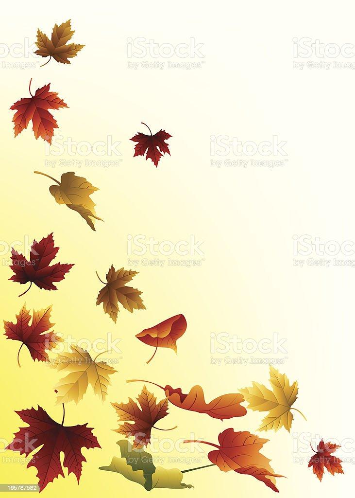 Falling Autumn Leaves vector art illustration