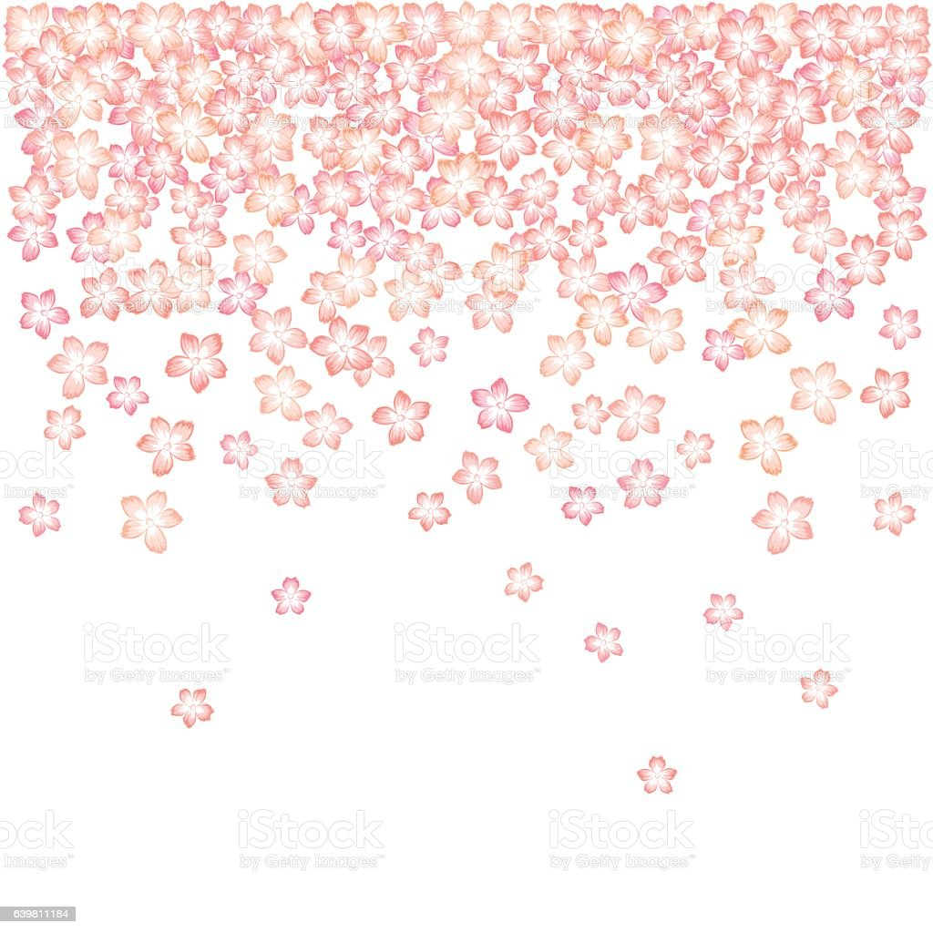 Falling Japanese cherry blossom vector art illustration