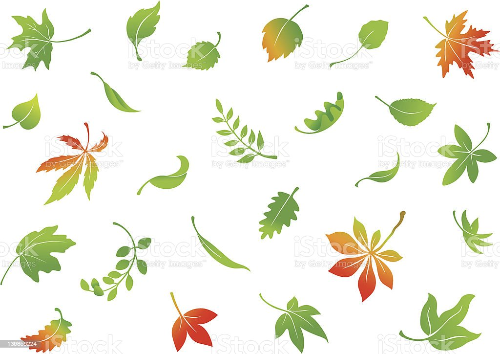 Falling Leaves Set royalty-free stock vector art