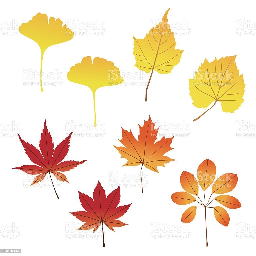 falling leaves vector art illustration