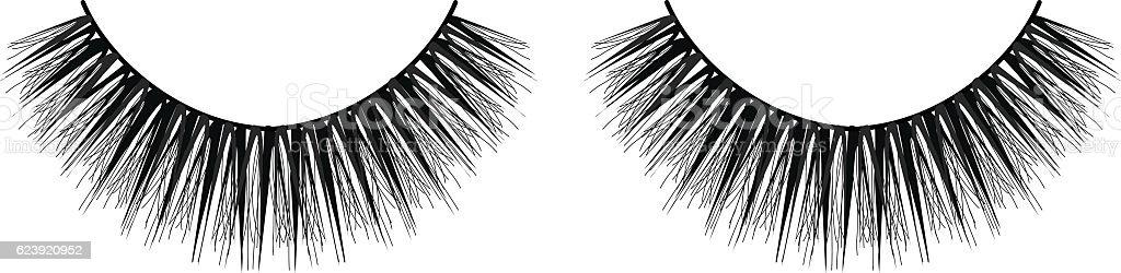 False Eyelashes vector art illustration