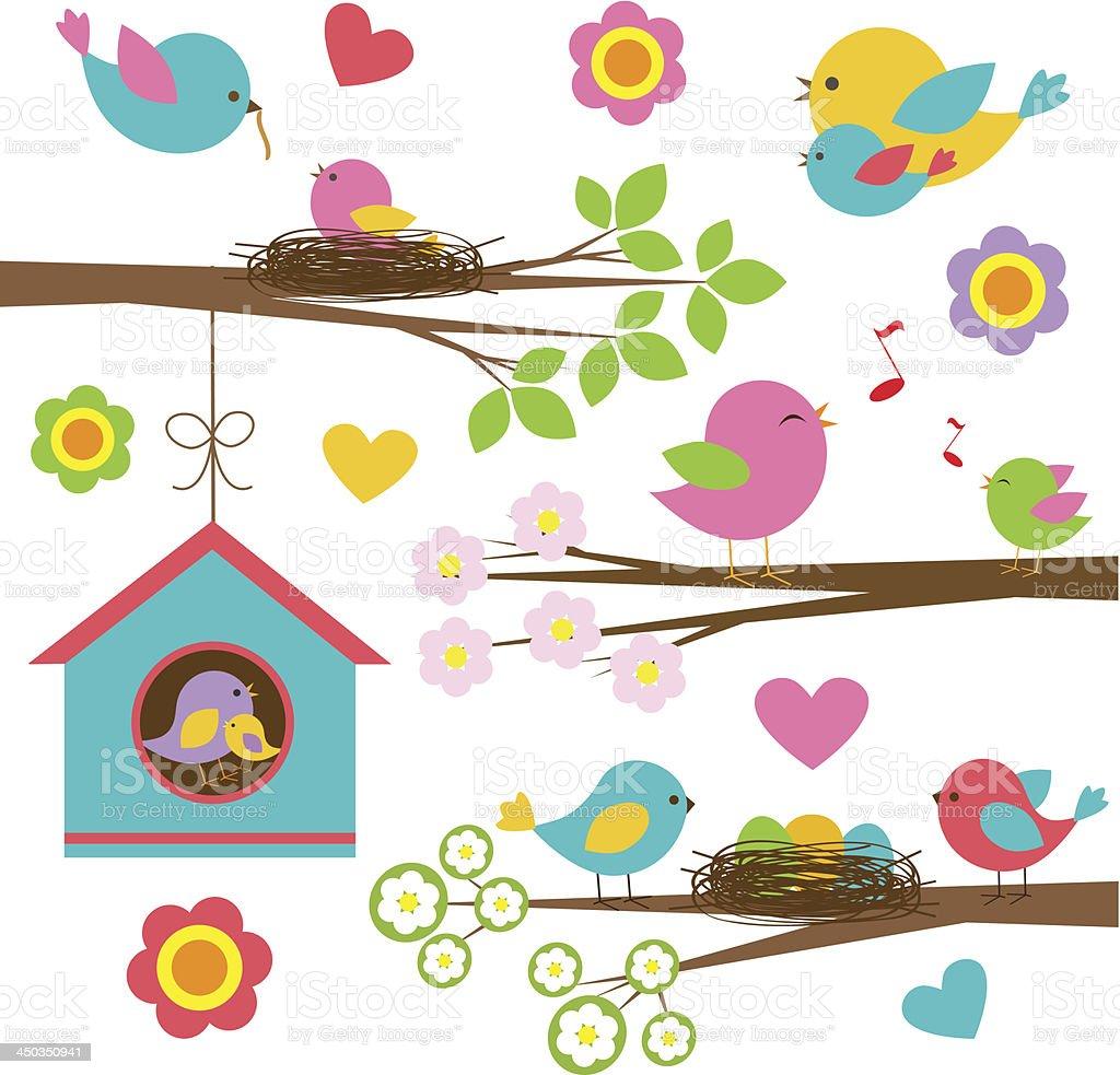 Families of birds vector art illustration