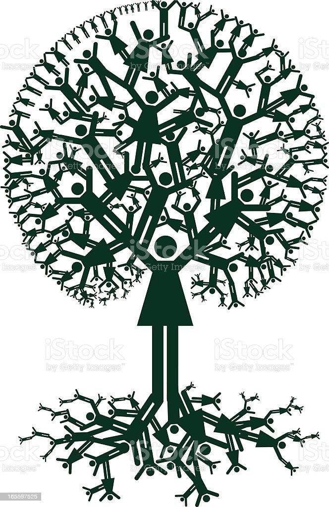 Family Tree Ancestry vector art illustration