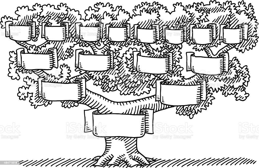 Arbre g n alogique vide banni res de dessin stock vecteur libres de droits 484716183 istock - Arbre genealogique dessin ...