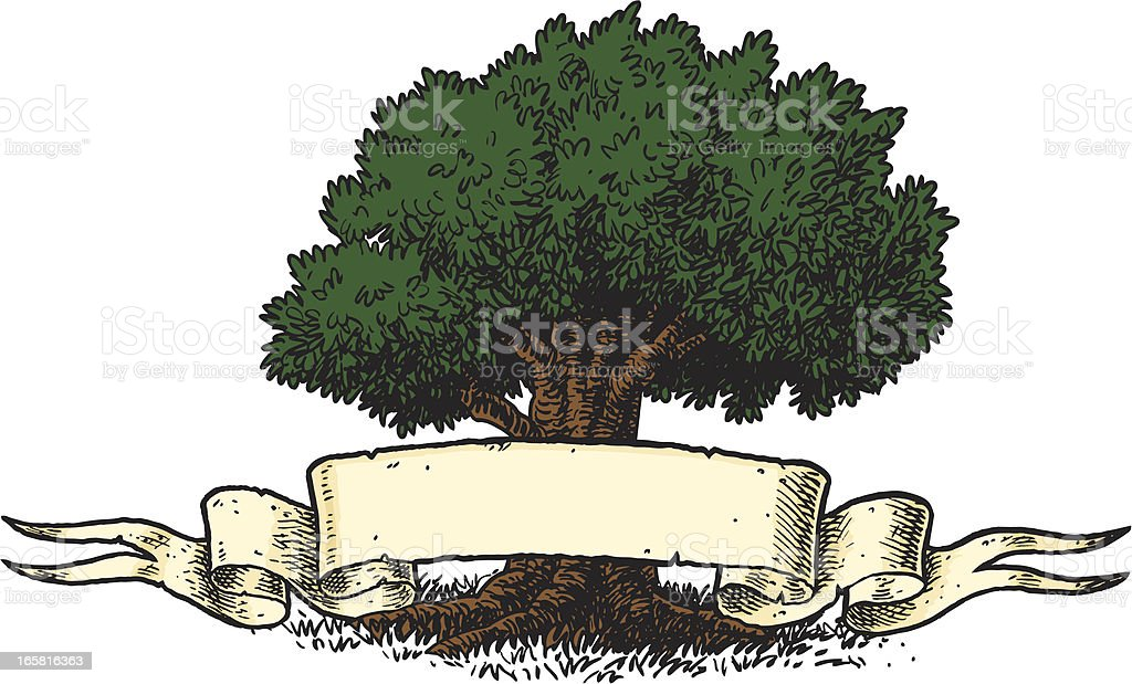 Family Tree royalty-free stock vector art