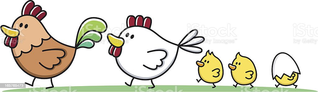 family with young children / rooster, chicken and chick cartoon vector art illustration