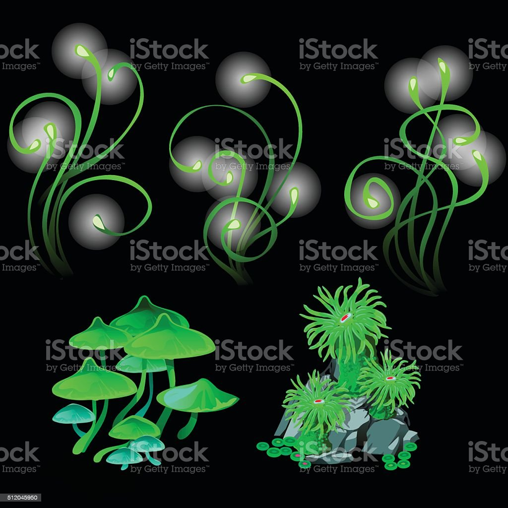 Fantastic glowing mushrooms and polyps vector art illustration