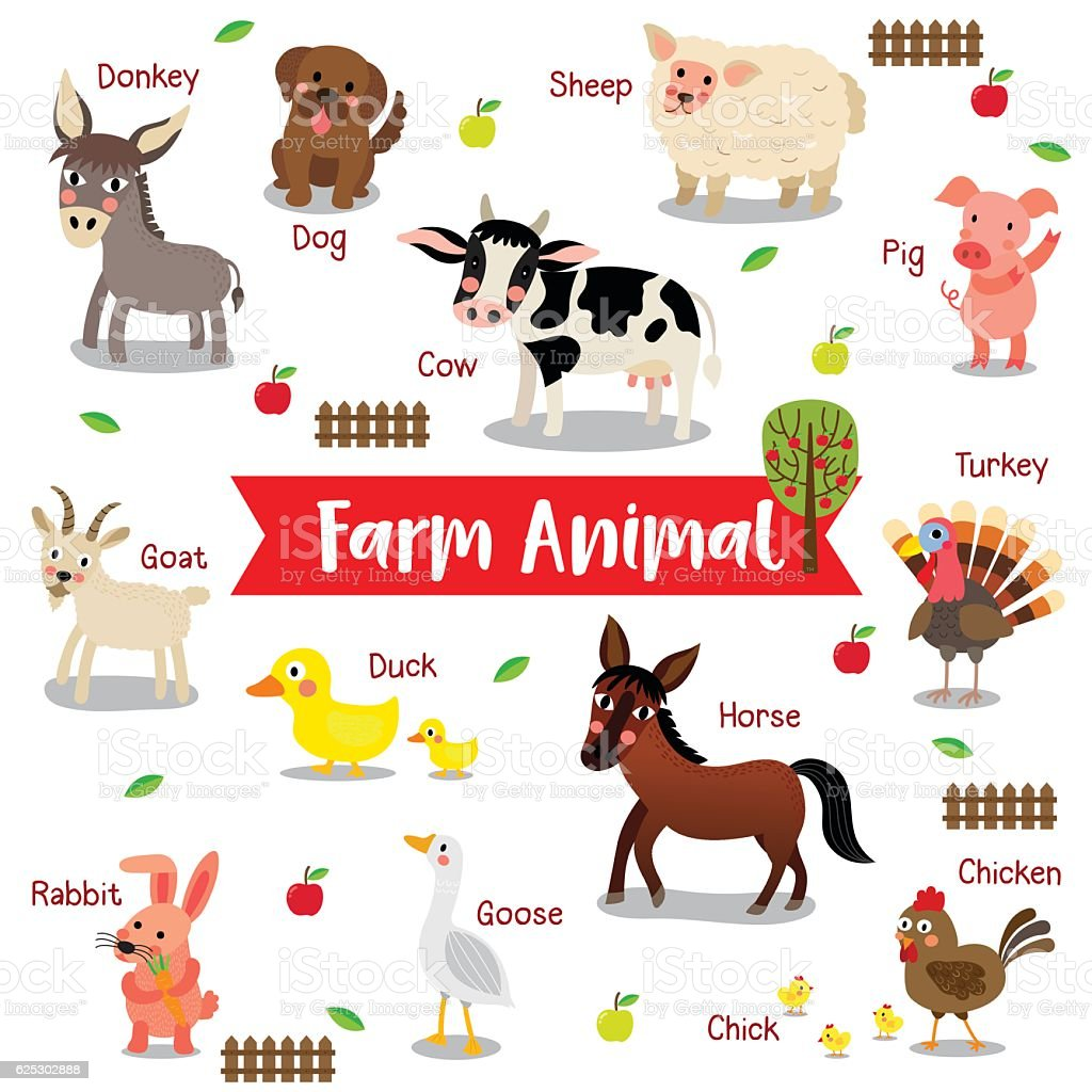 Farm Animal on white background with animal name vector illustration. vector art illustration
