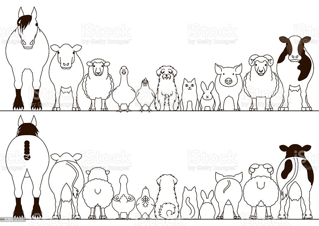 Line Art Farm Animals : Farm animals border set front view and rear stock