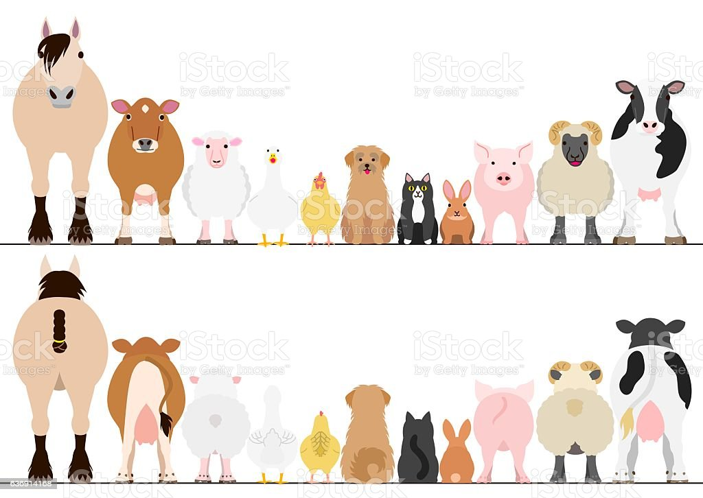farm animals border set, front view and rear view vector art illustration