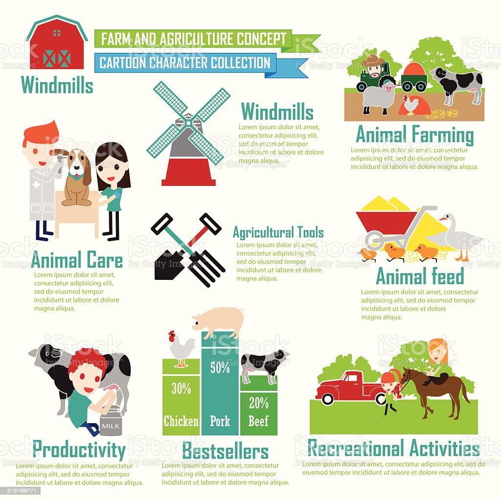 Farm animals ,Cartoon Characters infographic vector art illustration